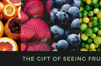 the gift of seeing fruit