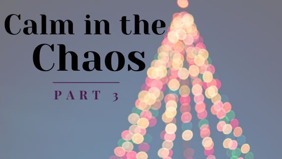 Calm in the Chaos Part 3 Breathe Ministry