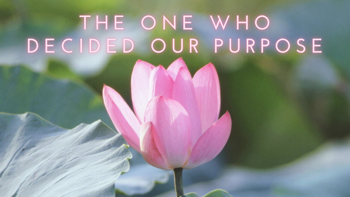 The One Who Decided our Purpose
